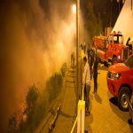 Llaman a prevenir los incendios forestales