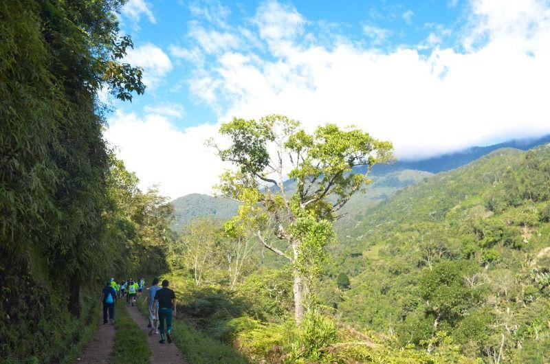 Decenas de caleños disfrutaron de la naturaleza en la caminata por Villa Carmelo