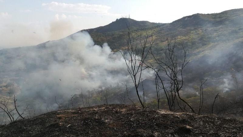 Incendios forestales consumieron vegetación en cerros de Cali