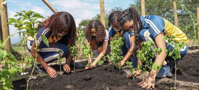 El Jardín de la Vida honra a estudiantes de Llano Verde