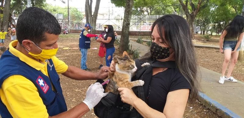 La comuna 5 tuvo jornada de salud animal