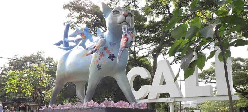 """""""Santa Estelita Gatía"""" llegó para embellecer a Cali"""