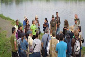 La Ibis pico de hoz es la nueva ave registrada en el humedal Charco Azul
