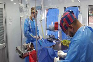 Comuna 13 tendrá jornada de esterilización para mascotas este viernes