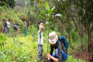 Tres mil árboles fueron sembrados en el Ecoparque Cerro de La Bandera