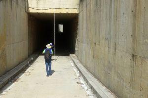 Habilitado túnel de la Terminal Paso del Comercio para buses del MIO