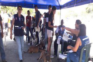 Registro para animales considerados potencialmente peligrosos en la Comuna 13