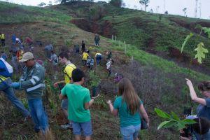Sembrados 300 árboles para reforestación de Cristo Rey