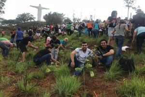 Casi 6 mil árboles plantados con el Plan Ave Fénix