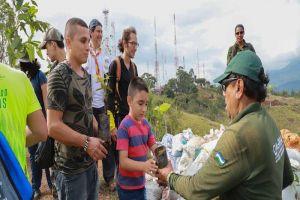 Plan Ave Fénix: Sembrados 200 arbustos en cerro de Cristo Rey