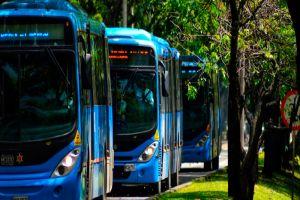 Conozca las cuatro rutas del MIO que ajustan sus recorridos por obras