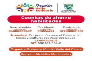 """Este miércoles todos unidos en el gran Donatón """"Valle Solidario"""""""