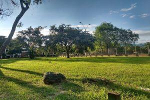 Multas y cierres de parques entre las nuevas medidas para controlar el virus
