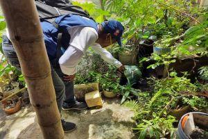 Cali suma 2.164 casos de dengue y ningún fallecido este año